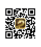 qr code DG ออนไลน์